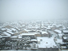 20080209_snow